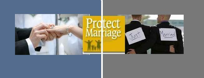 gay marriage should be legal term paper Same sex marriages reports, and term paper samples related to same of gay marriage licensees should we allow same-sex making gay marriages legal would.
