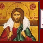 Doctrinal Homily Outlines for the Year of Faith