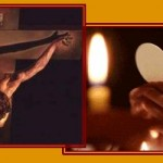 Homilies for June 2013