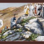 Homilies for July 2013