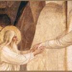 Homilies for November 2014