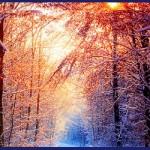 Winter Reading for February 2015