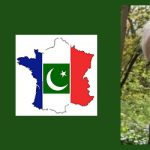 Islam and French Politics: A Reflection