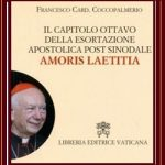 "Chapter Eight of the Post-Synodal Apostolic Exhortation ""Amoris Laetitia"""