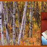 Early Fall Reading